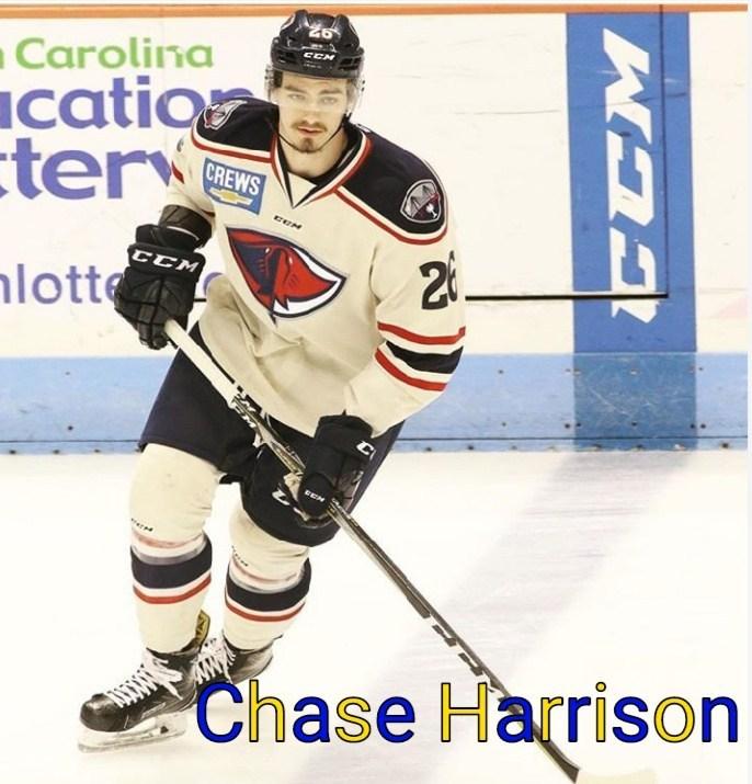 """Chase Harrison a ales să fie """"lup"""" în sezonul 2019-2020"""